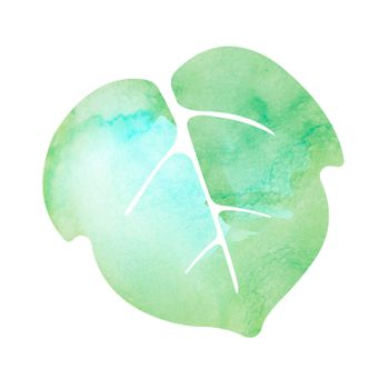 Summer motif watercolor painting illustration for summer greeting card etc. | morning glory leaf