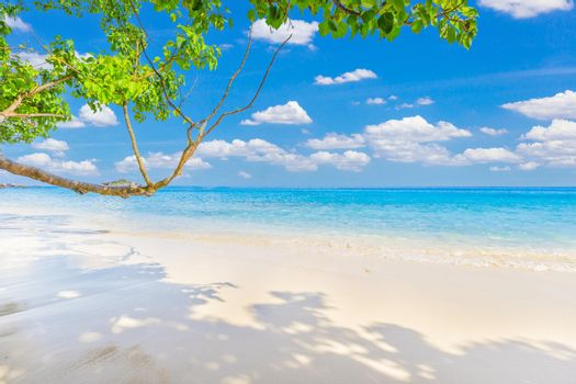 Beautiful sandy beach with wave crashing on sandy shore at Similan Islands Beautiful tropical sea Similan island, Thailand