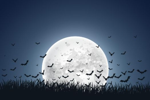 moon with flying bats on sky background