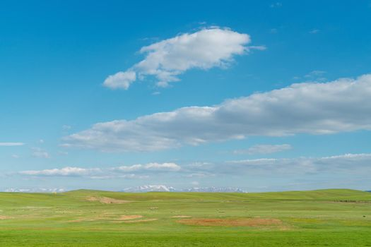 Vast grasslands and snow-capped mountains. Photo in Bayinbuluke Grassland in Xinjiang, China.