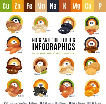 Nuts Flat Infographics