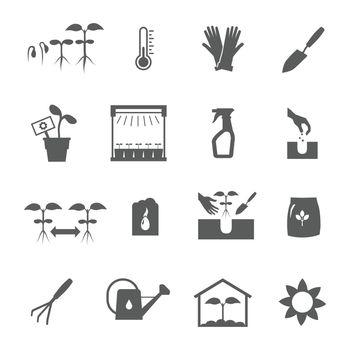 Seedling Black White Icons Set