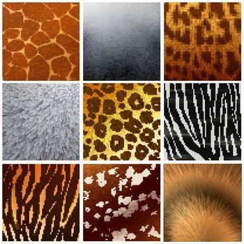 Fur texture Reailstic Set