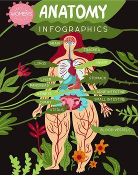 Women Organs Anatomy Infographics