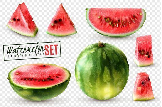 Watermelon Realistic Transparent Set
