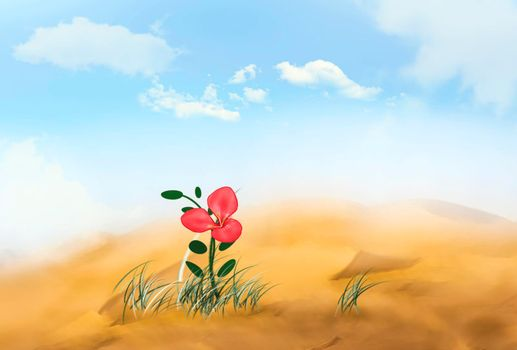 a flower with pink petals grows alone in the desert.