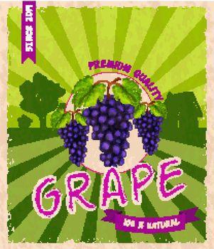 Grape retro poster