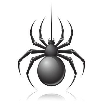 Black spider emblem