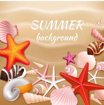 Seashell sand summer background