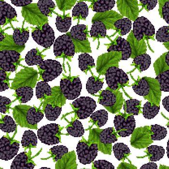 Blackberry seamless pattern