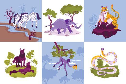 Rainforest Animals Design Concept