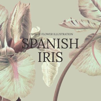 Floral template vector with spanish iris background, remixed from public domain artworks