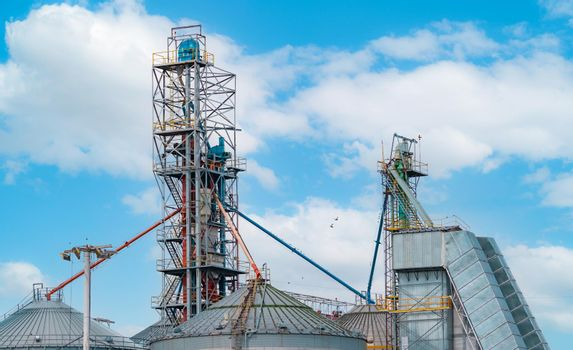 Agriculture silo at feed mill factory. Tank for store grain in feed manufacturing. Seed stock tower for animal feed production. Commercial feed for livestock and fish industries. Animal food factory.