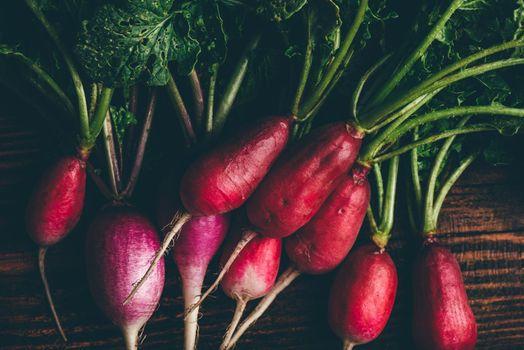Homegrown red radish
