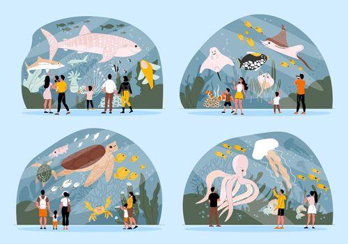 Aquarium Flat Set