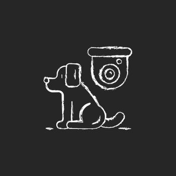 Pet control camera chalk white icon on dark background