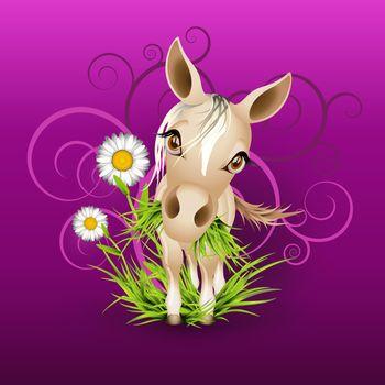 Little mare in grass over purple