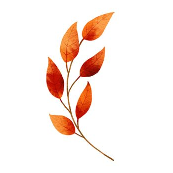 autumn leaves watercolor style.