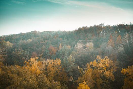 Multicolor Autumn Landscape Of Autumn Forest