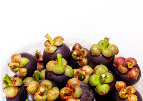 Fresh mangosteen in the big plastic bags for wholesale