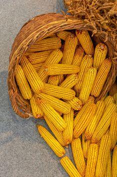 Corn Maize Basket