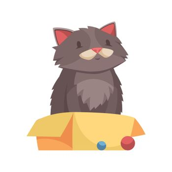 Adult Cat Illustration