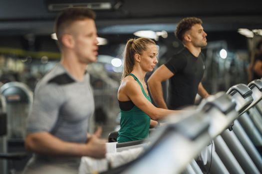 Getting Expert Exercise Advice