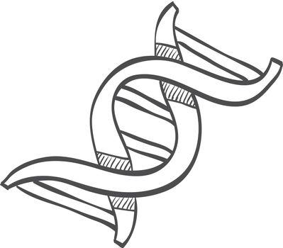 Sketch icon - DNA strands