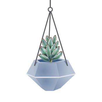Agave Cactus Pot Composition