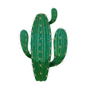Desert Cactus Plant Composition