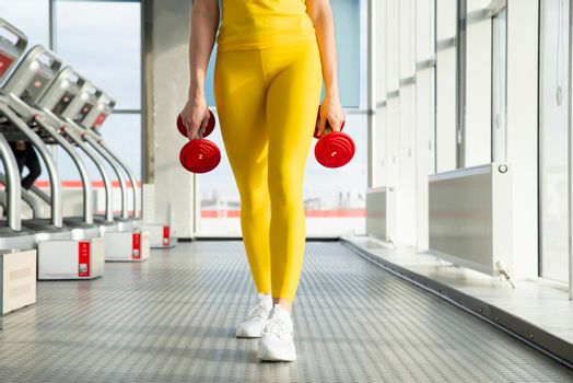Physically fit woman at the gym with dumbbells ready to strengthen her arms and biceps