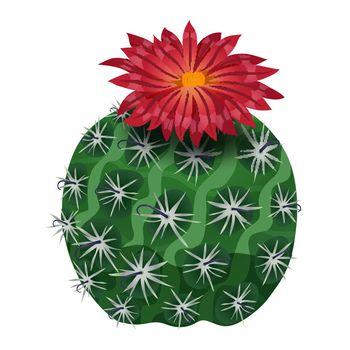 Parodia Craft Cactus Composition