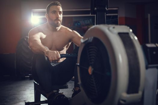 Fitness Low Rowing Excercise