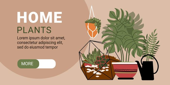 Home Plants Horizontal Banner