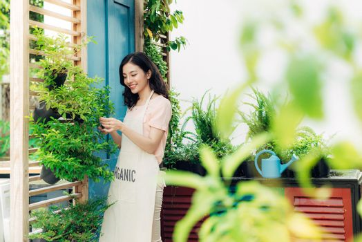Young professional woman in apron cut green bush clippers in the garden