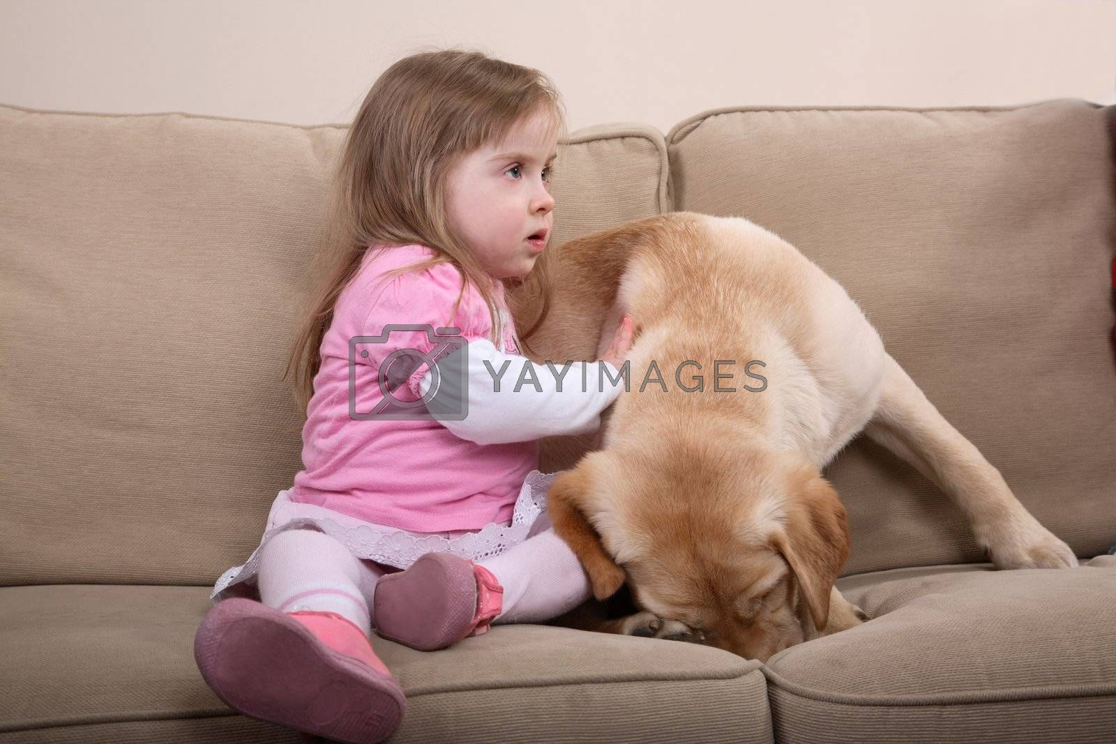 Therapy Dog and Little Girl by tomaszm