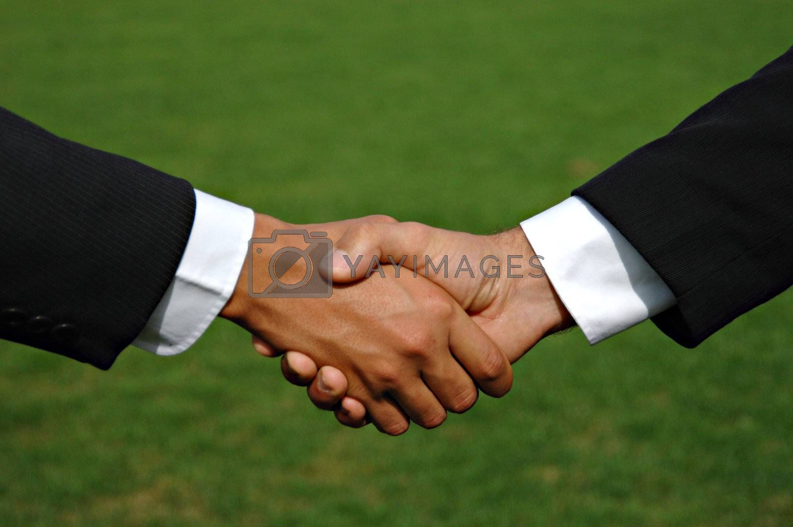 Business contract by swimnews