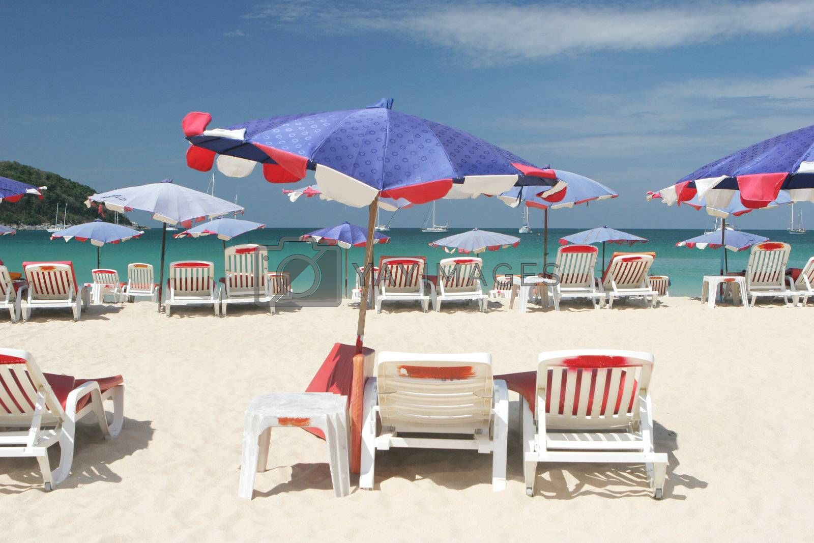 Beach chairs and umbrellas. by ginaellen