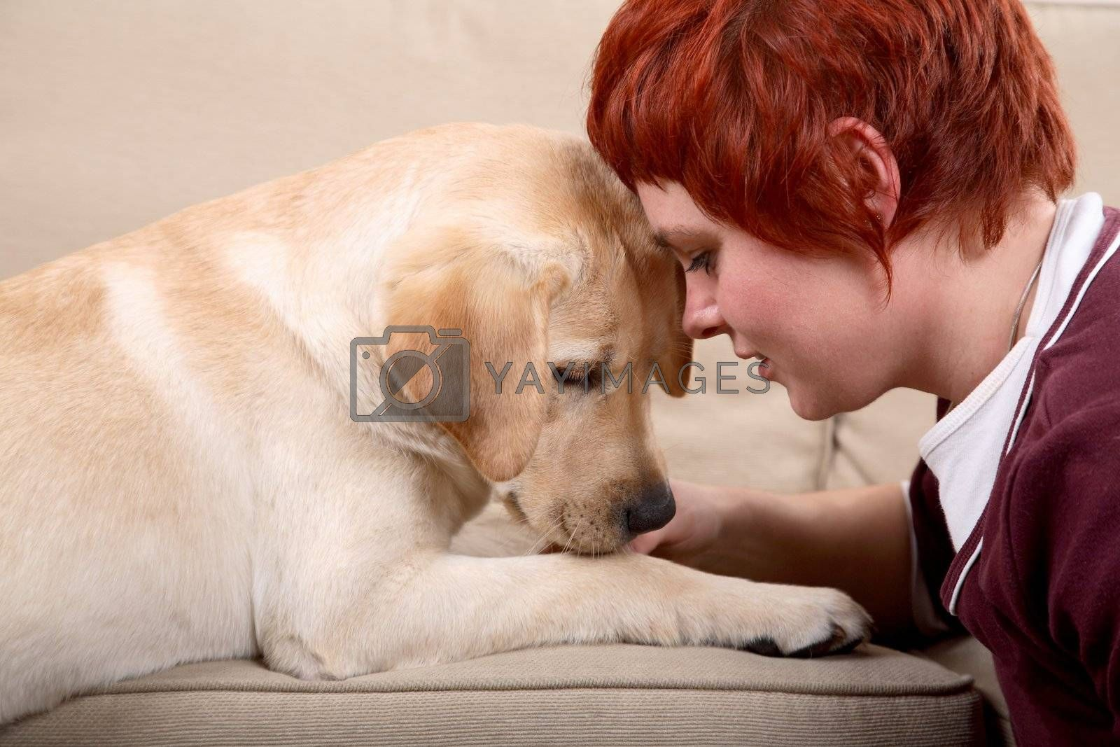 A matured caucasian woman and her young Labrador dog bonding on the sofa