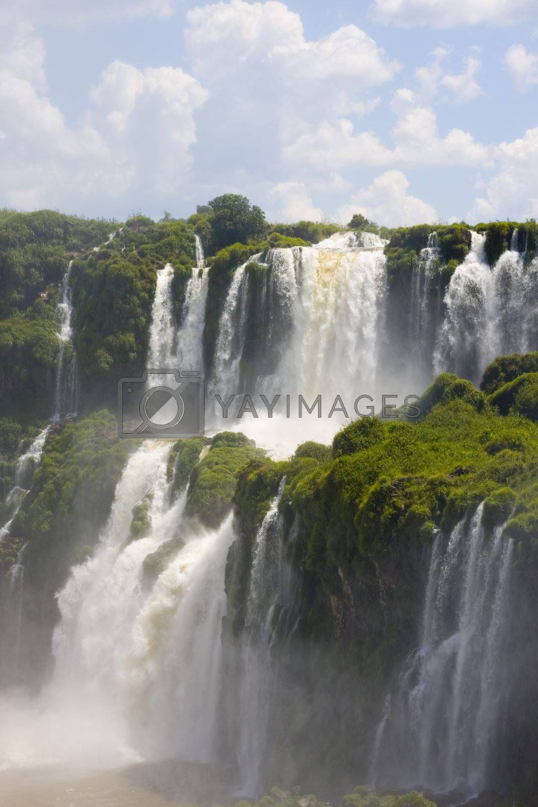 Part of the Iguassu falls on the argentinian side.