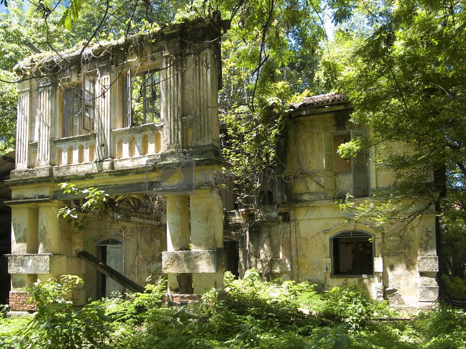 Old, overgrown building by epixx