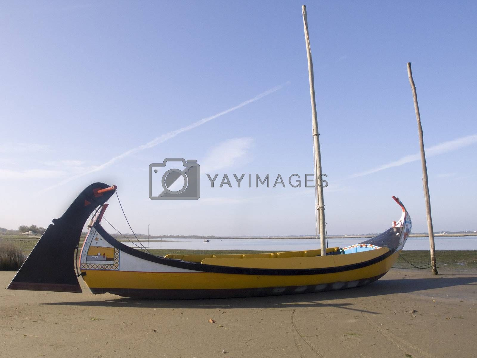 Moliceiro boat by PauloResende