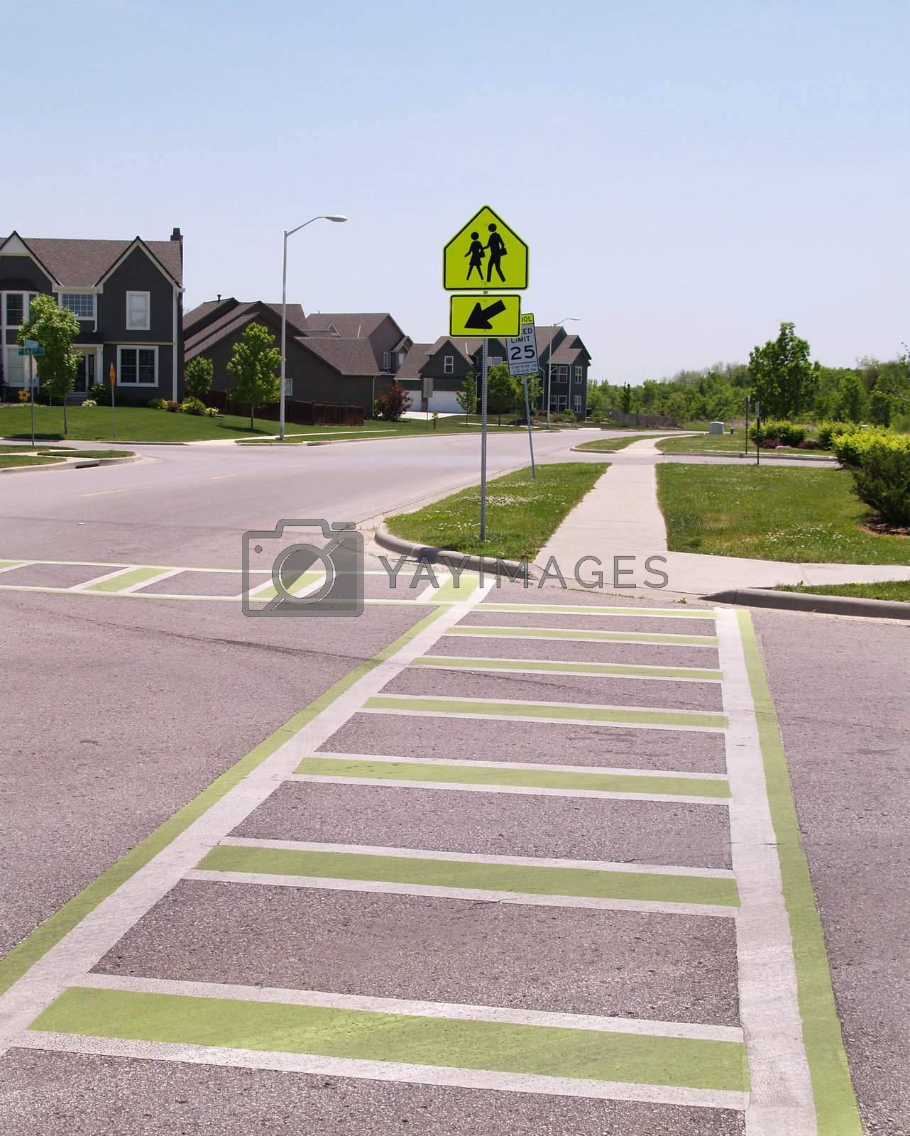 painted lines on the pavement to designate a school crossing area