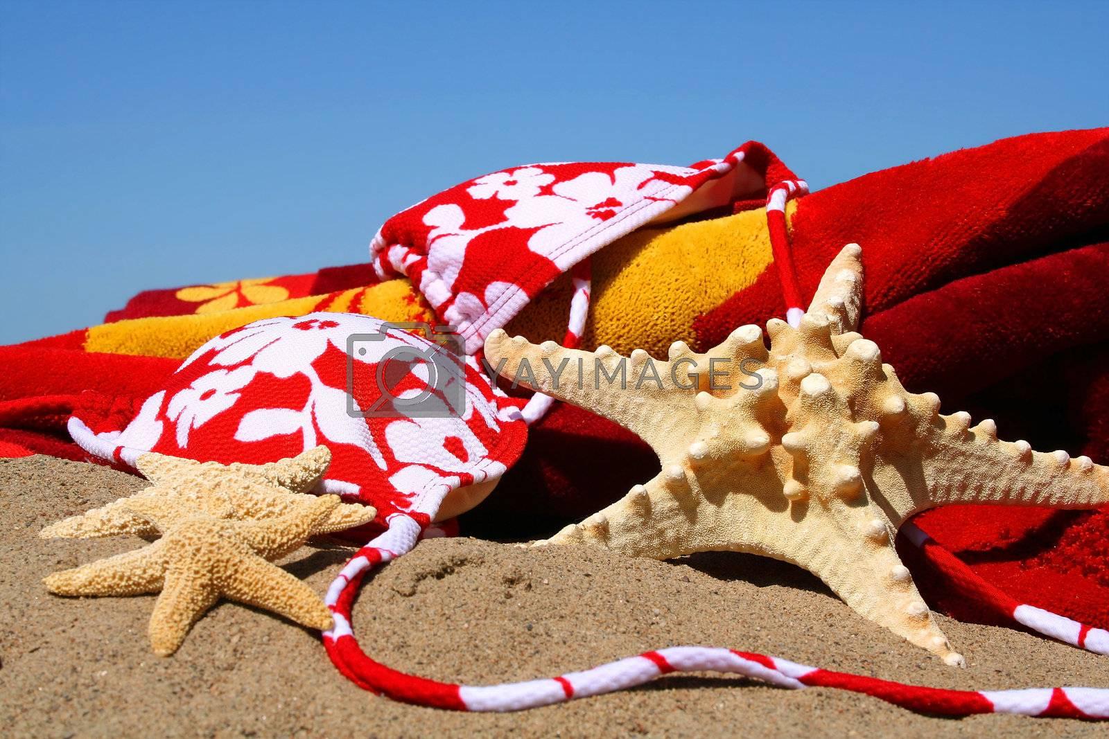 Bikini top, starfish with beach towel in the sand