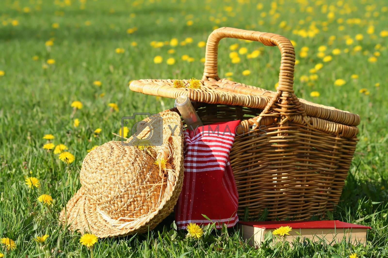 Picnic basket and straw hat laying on the grass