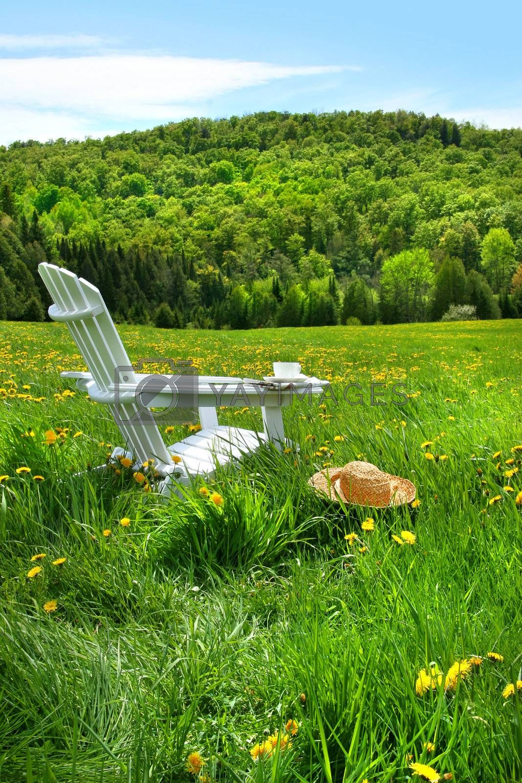 Relaxing on a summer chair in a field of tall grass with a sunset