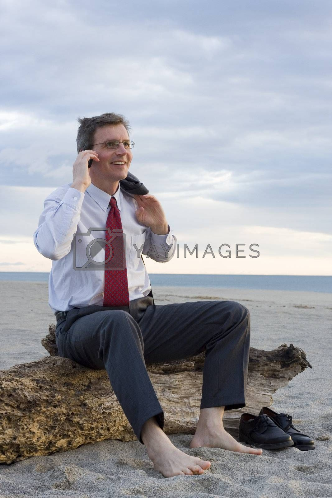 Smiling businessman making a phone call on a beach while sitting on an old tree trunk