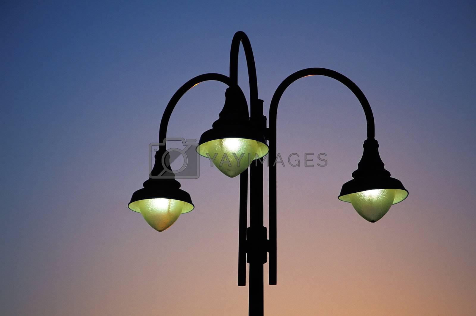 Three street lights in a city park