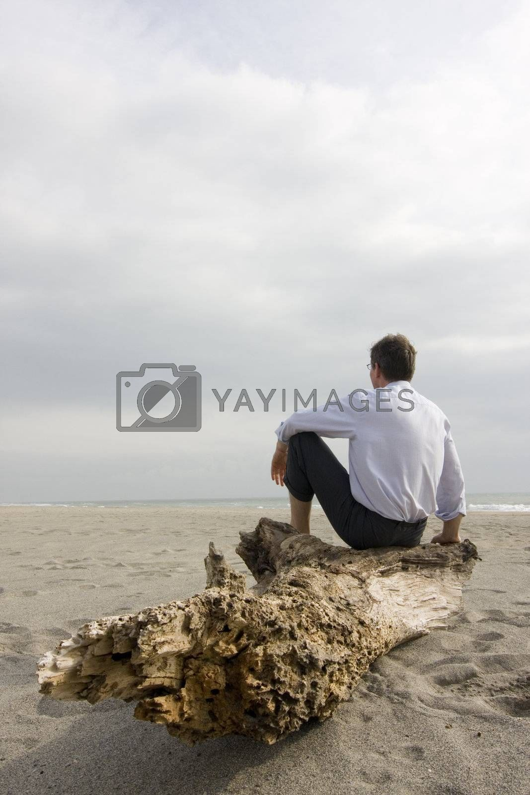 Businessman sitting on a tree trunk on a beach