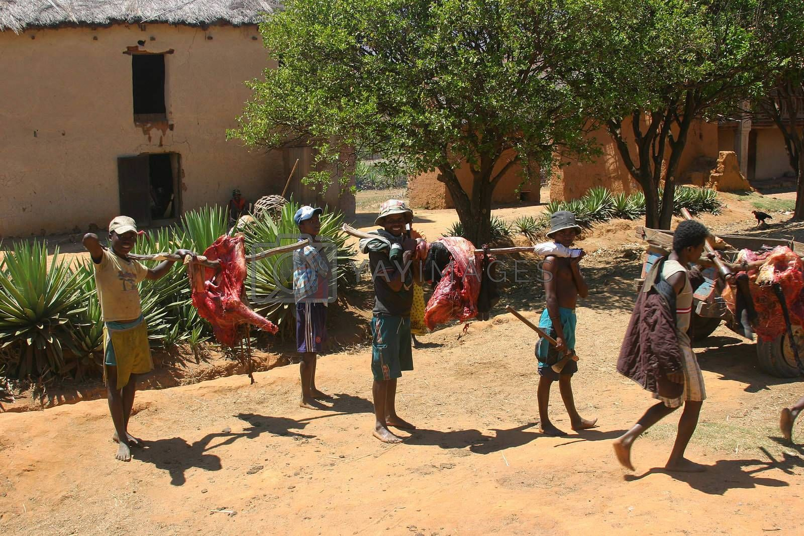 Villagers carrying the freshly butchered meat to the village